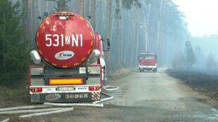 Pożary lasów w Polsce. Najwyższy stopień zagrożenia pożarowego w połowie kraju